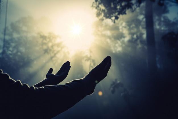 Esperança, a semente que produz vida