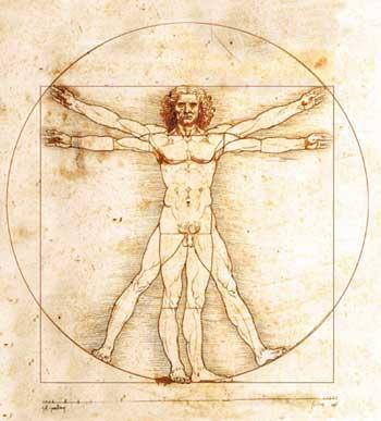 Universo corporal