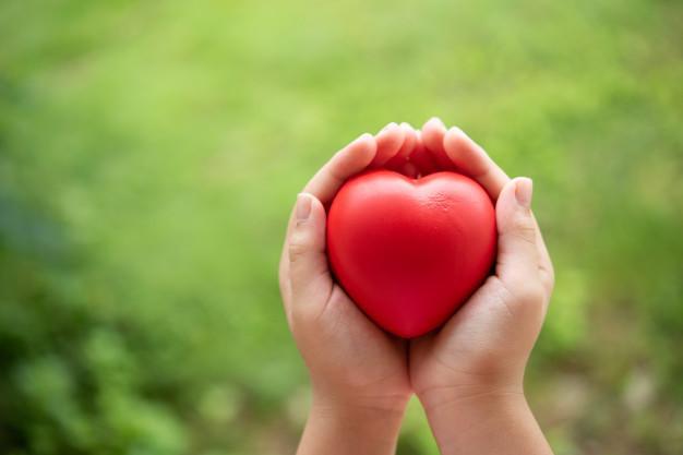 Módulo 2 - Resumo - Leis do amor