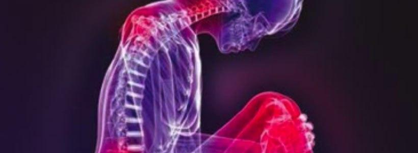 Sintomas e Doenças – O sintoma como caminho