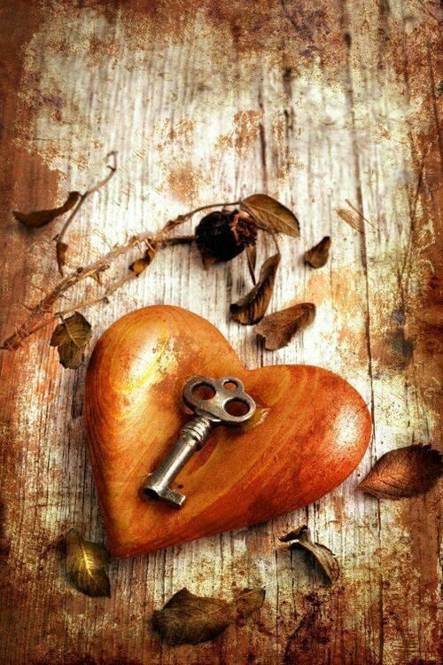 Leis do Amor e além
