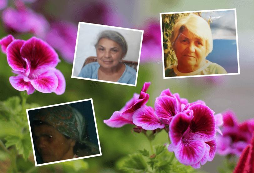Bisavó Ana, Avó Maria Anita, Mamãe Maria Elza como é grande o meu amor por vocês!!!