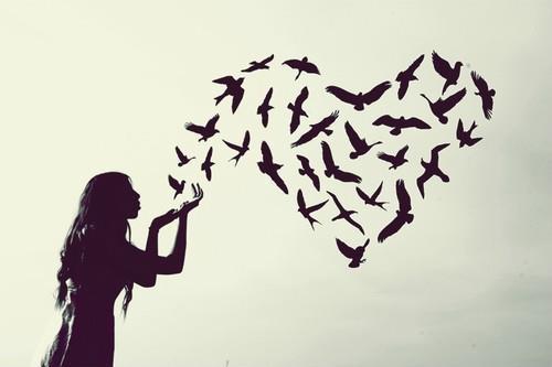 Amor interrompido e os limites do amar