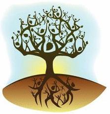 PRINCÍPIOS SISTÊMICOS: INSIGHTS DURANTE A AULA 05
