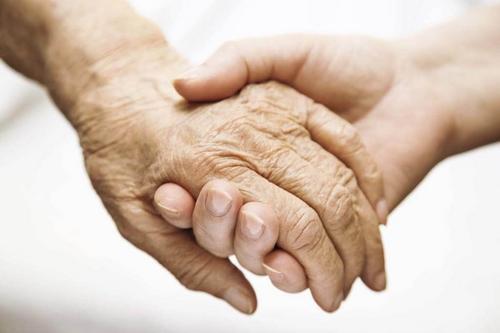 O saber sistêmico e o papel do cuidador