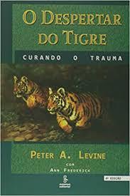 Fichamento: O despertar do Tigre