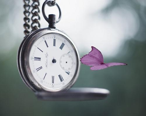 O tempo e o dinheiro nas nossas vidas