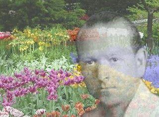 O TERAPEUTA FLORAL SISTÊMICO