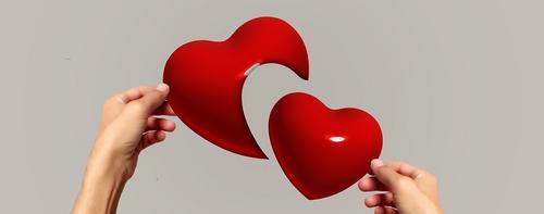 Sobre vínculos de amor interrompido